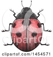 Clipart Graphic Of A Sketched Ladybug Royalty Free Vector Illustration by cidepix