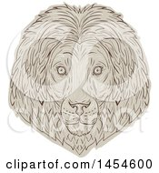 Sketched Male Lion Face