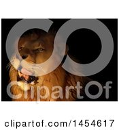Clipart Graphic Of A Male Lion In The Darkness Royalty Free Vector Illustration by dero