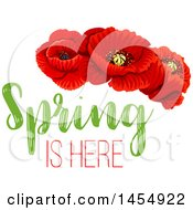 April 25th, 2017: Clipart Of A Red Poppy Flower Spring Time Season Design Element Royalty Free Vector Illustration by Vector Tradition SM