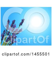 Clipart Of A Background Of 3d Lavender Flowers Over A Sunny Blue Sky Royalty Free Vector Illustration by elaineitalia