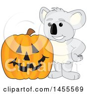 Koala Bear School Mascot Character With A Halloween Jackolantern Pumpkin