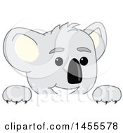 Clipart Of A Koala Bear School Mascot Character Peeking Over A Sign Royalty Free Vector Illustration