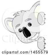 Clipart Of A Koala Bear School Mascot Character Peeking Around A Sign Royalty Free Vector Illustration