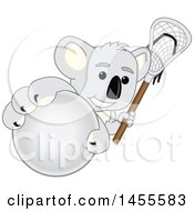 Koala Bear School Mascot Character Holding A Lacrosse Stick And Grabbing A Ball