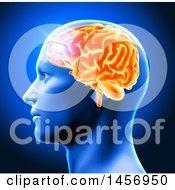 Clipart Of A 3d Profiled Mans Head With Glowing Orange Brain On Blue Royalty Free Illustration