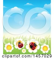 Clipart Of A Background Of Blue Sky With Clouds Grass And Laydbugs On Flowers Royalty Free Vector Illustration