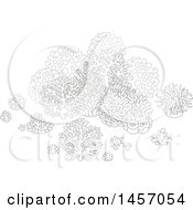 Clipart Of A Black And White Group Of Sea Fans Corals And Anemones Royalty Free Vector Illustration
