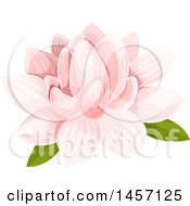 Clipart Of A Pink Water Lily Flower Royalty Free Vector Illustration