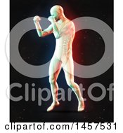 Clipart Of A 3d Medical Male Figure Boxing With Visible Spine With Dual Color Effect Over Black Royalty Free Illustration