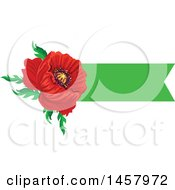 Red Poppy Flower And Green Banner Design Element