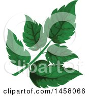 Clipart Of A Sorrel Sprig Royalty Free Vector Illustration