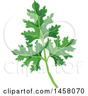 Clipart Of A Parsley Sprig Royalty Free Vector Illustration