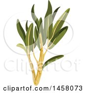 Clipart Of A Savory Sprig Royalty Free Vector Illustration