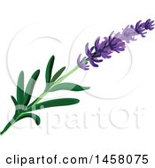 Clipart Of A Lavender Sprig Royalty Free Vector Illustration