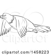 Black And White Flying Bald Eagle In Lineart Style