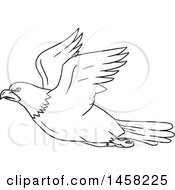 Clipart Of A Black And White Flying Bald Eagle In Lineart Style Royalty Free Vector Illustration