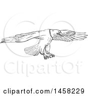 Flying Bald Eagle In Sketched Black And White Style