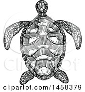 Sea Turtle In Black And White Sketched Style