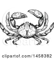 Clipart Of A Crab In Black And White Sketched Style Royalty Free Vector Illustration