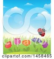 Poster, Art Print Of Ladybug Flying Over Flowers Against A Blue Spring Sky