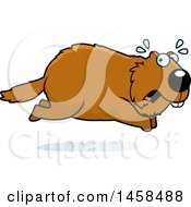 Clipart Of A Scared Woodchuck Groundhog Whistlepig Running Royalty Free Vector Illustration