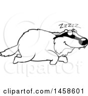Black And White Sleeping Badger
