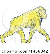 Clipart Of A Yellow Walking Chimpanzee In Sketched Drawing Style Royalty Free Vector Illustration