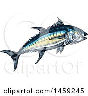 Clipart Of A Sketched Tuna Fish Royalty Free Vector Illustration