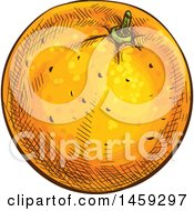 Clipart Of A Sketched Navel Orange Fruit Royalty Free Vector Illustration by Vector Tradition SM