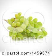 Clipart Of A 3d Bunch Of Green Grapes On A Shaded Background Royalty Free Vector Illustration by cidepix