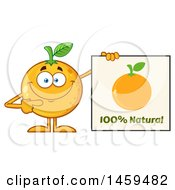 Clipart Of A Navel Orange Fruit Mascot Character Pointing To A Natural Sign Royalty Free Vector Illustration by Hit Toon