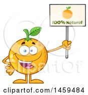 Clipart Of A Navel Orange Fruit Mascot Character Holding Up A Natural Sign Royalty Free Vector Illustration by Hit Toon