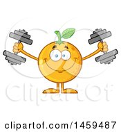 Clipart Of A Navel Orange Fruit Mascot Character Working Out With Dumbbells Royalty Free Vector Illustration by Hit Toon
