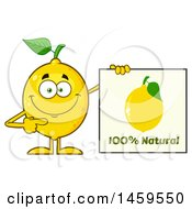 Clipart Of A Happy Lemon Mascot Character Holding A Natural Sign Royalty Free Vector Illustration
