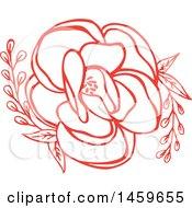 Red Blooming Wildflower