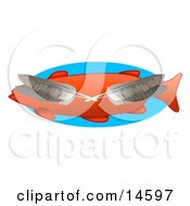 Four Feathers Over An Orange Fish Clipart Illustration