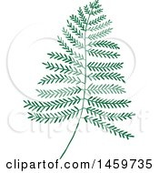 Clipart Of A Fern Leaf Royalty Free Vector Illustration