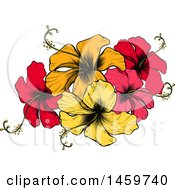 Clipart Of An Engraved Or Woodcut Colorful Hibiscus Flower Design Royalty Free Vector Illustration