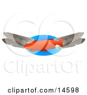 Orange Fish Swimming With Feathers Clipart Illustration