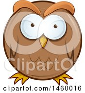 Poster, Art Print Of Cartoon Chubby Round Brown Owl