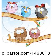 Poster, Art Print Of Cartoon Group Of Round Owls Perched On Tree Branches