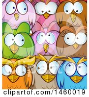 Clipart Of A Cartoon Background Chubby Round Colorful Owls Royalty Free Vector Illustration by Domenico Condello