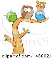 Poster, Art Print Of Cartoon Group Of Round Owls Perched On A Tree Branch