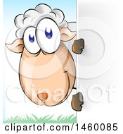 Clipart Of A Cartoon Happy Sheep Looking Around A Sign Royalty Free Vector Illustration by Domenico Condello