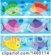 Colorful Fish Borders