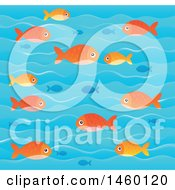 Background Of Blue And Orange Fish