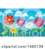 Row Of Flowers Under A Summer Sky