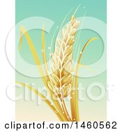 Clipart Of A Barley Stalk Over Gradient Royalty Free Vector Illustration