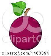 June 23rd, 2017: Clipart Of A Passion Fruit Royalty Free Vector Illustration by Hit Toon